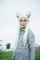 Thranduil-The Elven King by ominobuffo