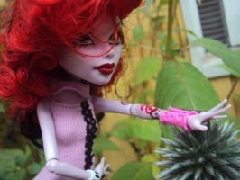 2014 - Operetta and flowers. 8 by Jessi-element