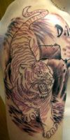 tiger in pro by seanspoison