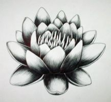 LOTUS DEUX by surf-4-life