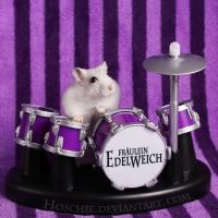 Frl. Edelweich is a Drumster by hoschie