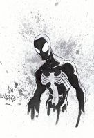 Black Spiderman by MetaWorks