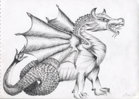 The Wyvern by P3dy