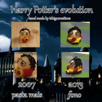 Harry Potter's evolution by ichigocreations