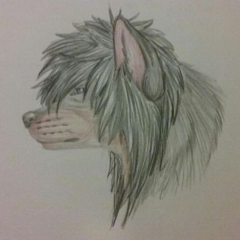 Gift :: Zoe-the-wolfy by ThisbyWaters