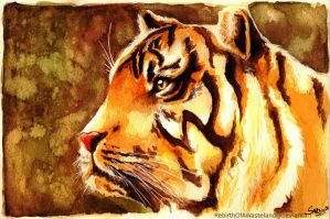 water colour - tiger by RebirthOfAWasteland