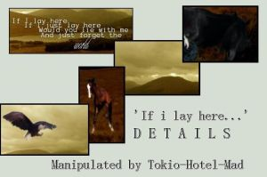 If i lay here D E T A I L S by Tokio-Hotel-Mad