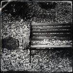 Bench by jfdupuis