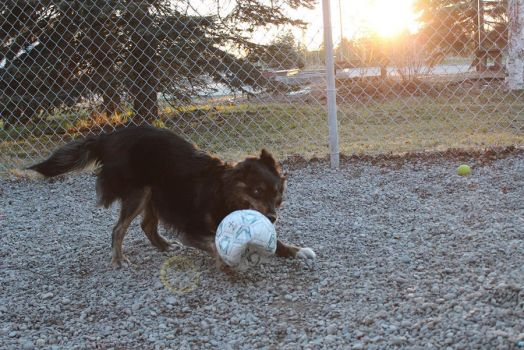 Playing Soccer by Aayrick