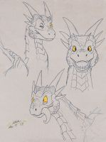 Draco sketches by Mr-Stot