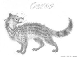 Ceres by Henrieke
