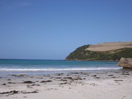Shelly Beach (South End) [STOCK] by fishter911
