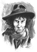 Doctor Who--Tom Baker Headshot by tedwoodsart