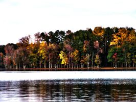 Colorful Lake Shore by JeremyC-Photography