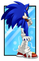 Birthday gift: Sonic Boom by Kyuubi83256