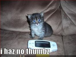 I has no thunbz by bigarch