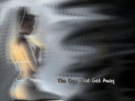 One That Got Away - Wallpaper by aristocrat