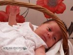 Baby in basket by SerassPhoto