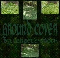 Ground Cover Pack by Lengels-Stock