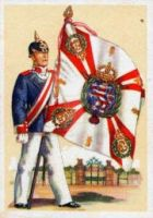 5th Grand Ducal Hessian Inf Regt Nr. 168 by julius1880