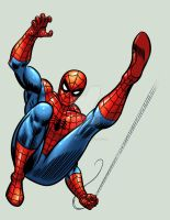 Spider-man by bennyfuentes