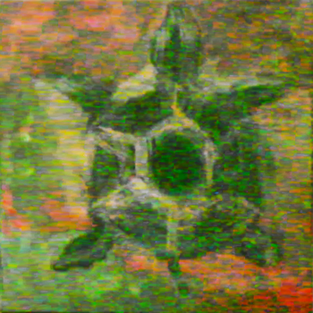 tortue by dionlynch
