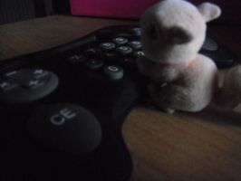 squirrle gamer by 9madgirl9