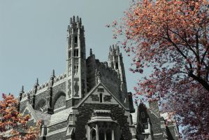 Yale in Infrared 2 by re-dream