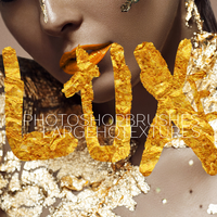 LUXE PS brushes+Gold Foil textures Starter Pack by ShekFilters