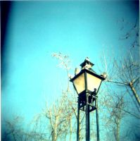 holga 02 by Wykie