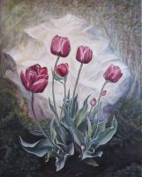 Tulips in the forest by alverena
