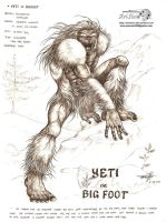 yeti by artstain