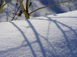 Shadows on snow by saltov-man