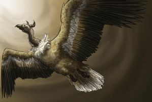 Sand Vulture by Aerophoinix