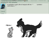 Q 105 by Ask--Jayfeather