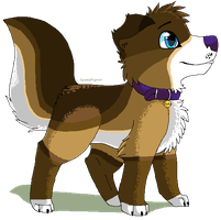 .:CO:. Dog-With-The-Bowtie by SpunkyRacoon