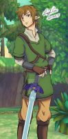 Link Skyward Sword by LayzeMichelle