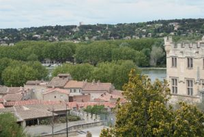 look from above Avignon 2 by ingeline-art