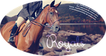 Royals. by BrennasEquineStudio