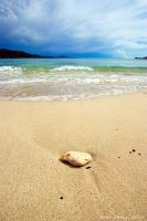 A rock in the sand by ivancoric