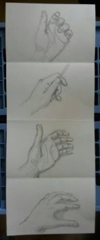 Hands  study by CaroSynke