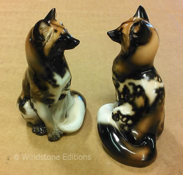 Sitting red foxes painted like African wild dogs by Reptangle