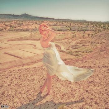 Top secret location pin up by Hollinger