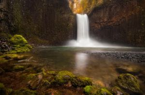 the abiqua by NWunseen