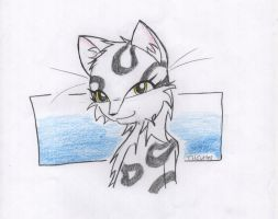 Snow Leopard by Cutter9792