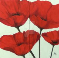 poppies on white by canis-lupus59