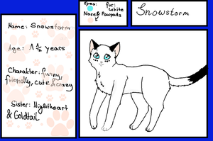 Reference Sheet Snowstorm by Snowstorm-cat