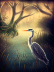 Great Blue Heron by Doomed-Dreamer