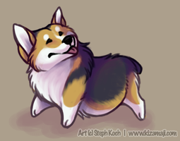 Dis is Corgi. by bawky