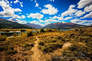 Pathway to Nature's Paradise by JessicaDobbs